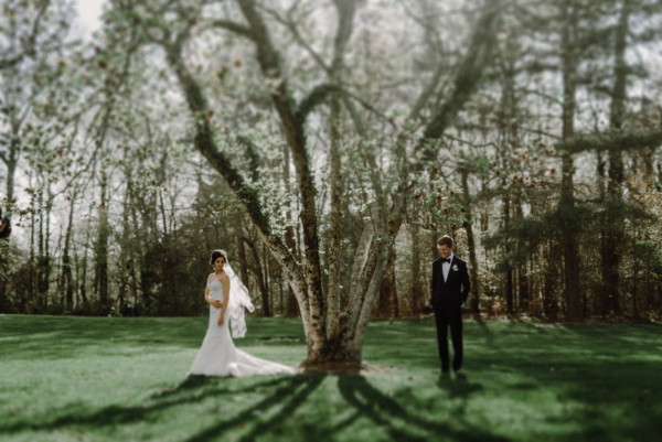 Bride and Groom Portrait by tree